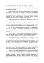 RIMA_relatrio.docx